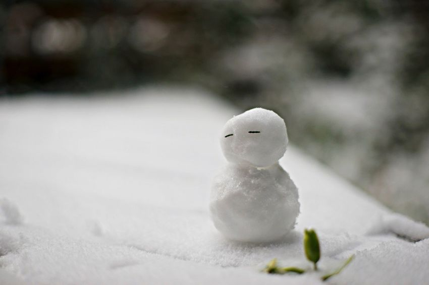 Snowman Snow Enjoying Life