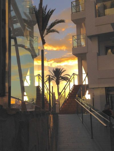 Canary Islands Sunwing ThomasCook Glass Reflection Sun Sunset Holiday Clounds And Sky ReflectionThe Week On EyeEm Puerto Rico Handrail Metal Thomas Cook Clouds And Sky Paint The Town Yellow Live For The Story Architecture EyeEmNewHere