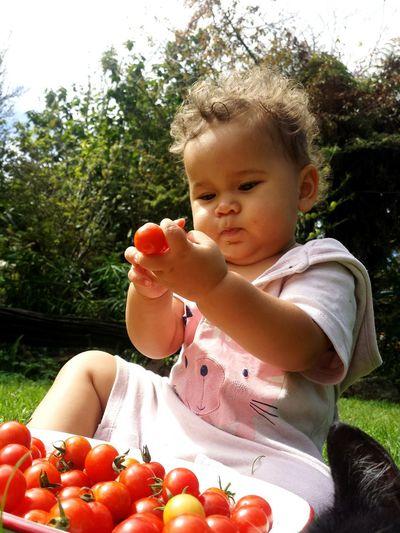Childhood Fruit