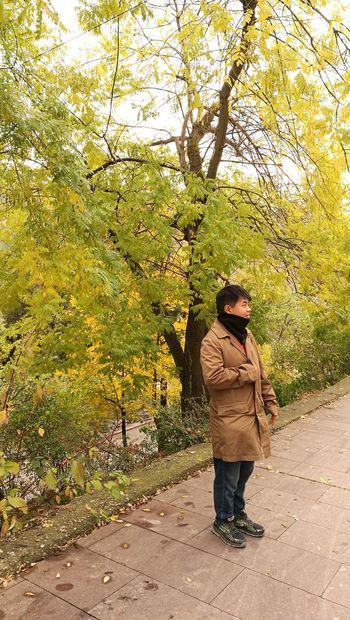 EyeEm Selects Standing Adult One Man Only One Person Tree Outdoors Real People Nature Casual Clothing Cold Weather Sunny Day Walking Green Colour Mother Nature Yellow Color Freshness Plant Tree Asian