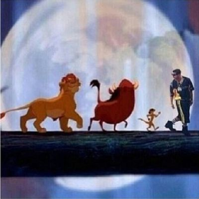 Icant IWont IWillNOT Drake  LionKing Simba Timon Pumba ThrowbackThursday TBT