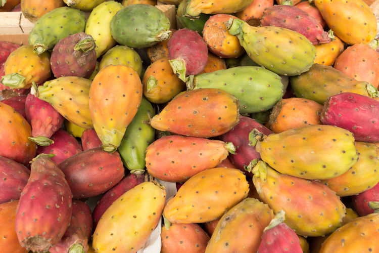 Full Frame Shot Of Prickly Pear Cactus In Market