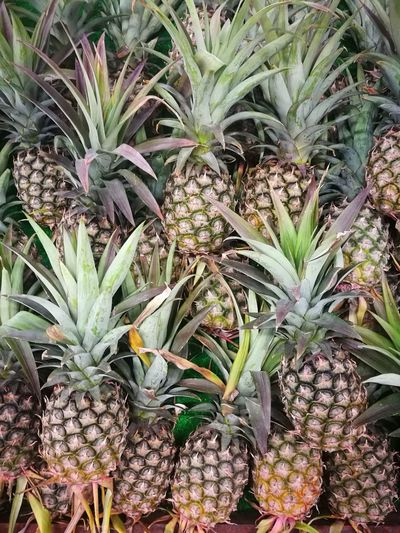 pineapple Vitamin C Fruit EyeEm Selects Pineapple Leaf Agriculture Close-up Plant Green Color