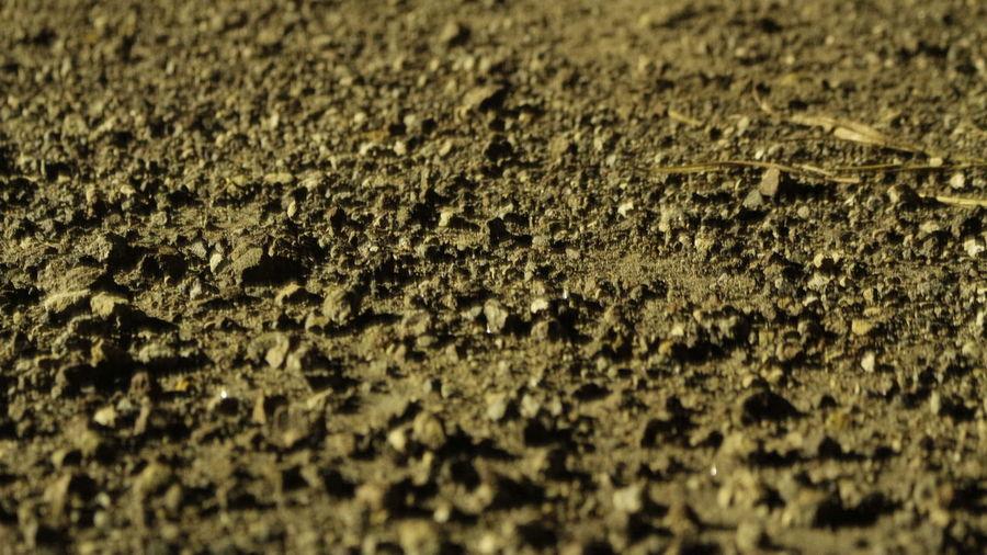 Full frame shot of ground