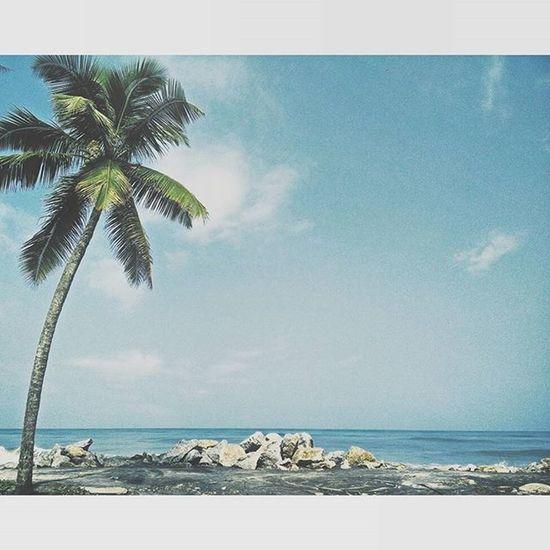 Beach Please. Lifeisabeach Pun Travelgram Travel Wanderlusting Keralam Kerala Vacation Sunnybeach Instaview Scenicview Igersindia Igersdelhi Igers Discoveringnewplaces Vscocam VSCO Vscogood Shesellsseashellsbytheseashore