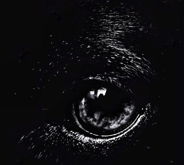 right before sleep finds her.... Interpretation Artphotography Black And White Astronomy Space Water Galaxy Star - Space UnderSea Constellation Astrology Sign Motion Close-up