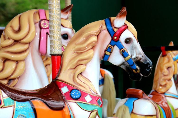 Merry go Round Celebration Colourful Horse Merry Go Round Merry Go Round Horse