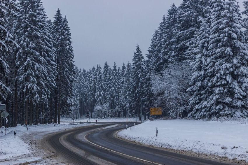 Winter Snow Cold Temperature Transportation Tree Road Nature The Way Forward Beauty In Nature Tranquility No People Outdoors Day Winding Road Scenics Sky Perspectives On Nature