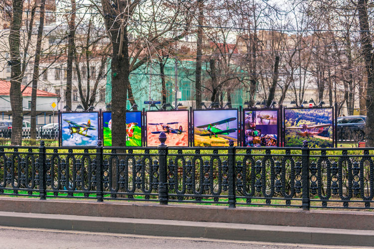 Built World Architecture ArtWork City Exhibition Of Paintings Frames Multi Colored Outdoors Paintings Public Square Tree