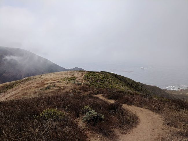 Brown and green Fog Sea Water Beach Fog Sky Landscape Horizon Over Water Coast Shore Coastline Ocean Coastal Feature