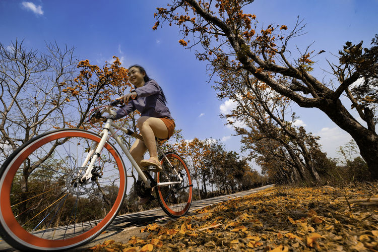 Low angle view of man riding bicycle against trees