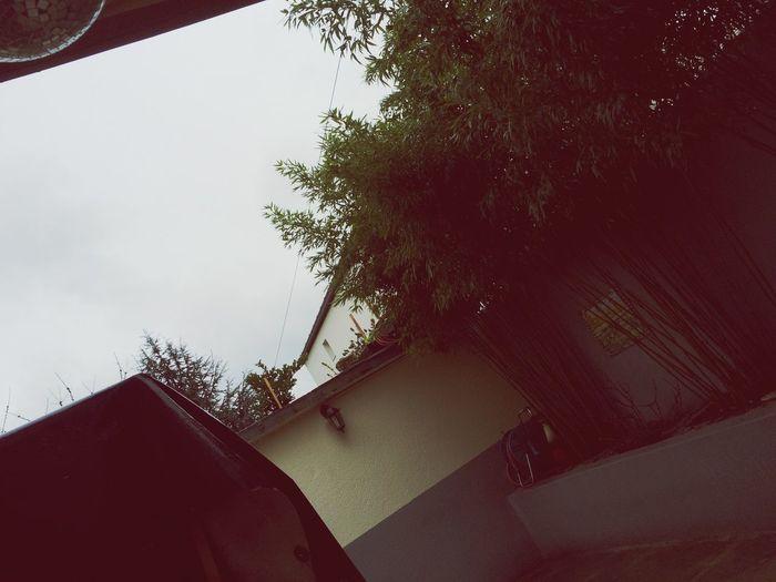 Pluie Sous La Pluie Mauvais Temps Gris Bamboo Dehors