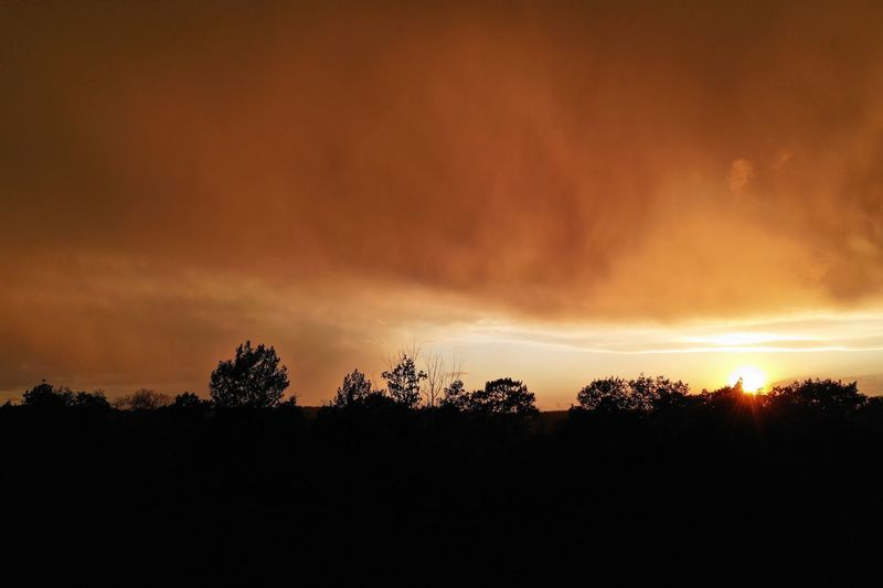Storm Eye Sunset Storm Cloud Storm Clouds At Sunset Sky Tree Silhouette Sunset Plant Beauty In Nature Cloud - Sky Dramatic Sky Tranquil Scene Low Angle View Nature Tranquility Orange Color Scenics - Nature Outdoors
