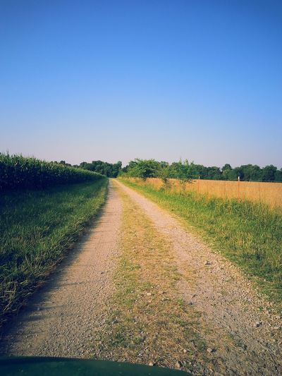 Dirt road amidst agricultural field against clear sky