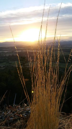Table Rock Southern Oregon Sunrise Hiking Adventures Valley View Quiet Moments