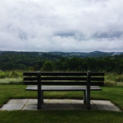 Survey Cloud - Sky Bench Sky Seat Nature Beauty In Nature Plant Tranquil Scene Tranquility Scenics - Nature No People Grass Field Environment Day Park Bench Land