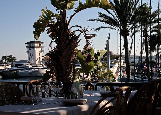 Wine Moments Boats Growth Harbor Hello World Hidden Gems  Holiday Lunch Time! Mallorca Outdoors Palm Trees Port Puerto Portals Relaxing Restaurant Sky SPAIN Sunlight Table And Chairs Take Your Place Tower Travel Tree Wineandmore Wineglass