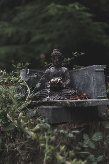 Buddha statue in dark, lush forest. Buddha Buddha Statues Pacific Northwest  Perspectives On Nature Buddha Statue Buddhism Close-up Day Nature No People Outdoors Religion Sculpture Statue Zen Zen-like