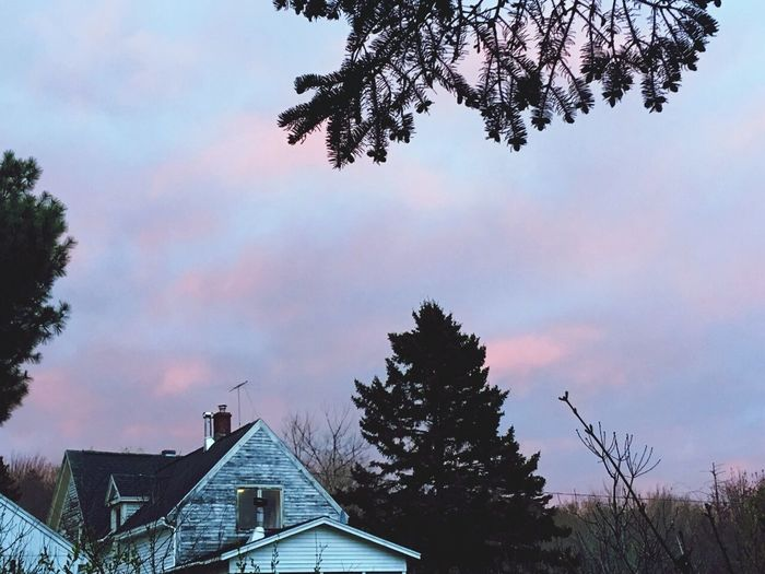 Casa,sky Plant Nature