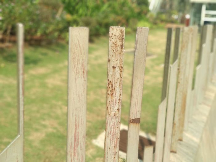 Steel Bars Metall Material Nature Grass Focus On Foreground Wooden Post Outdoors Protection Close-up Mammal No People Day Green Color Safety