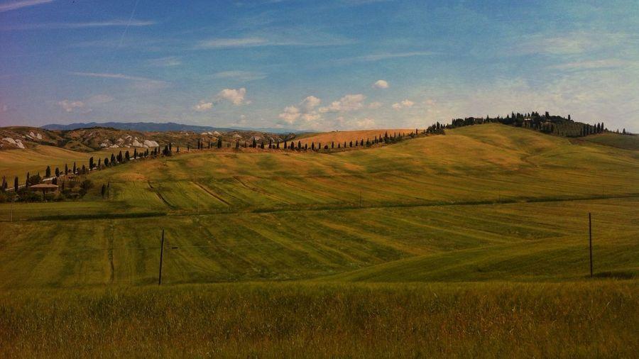 Landscape in Toscana IPhoneography Mobileart Igerssherbrooke Landscape