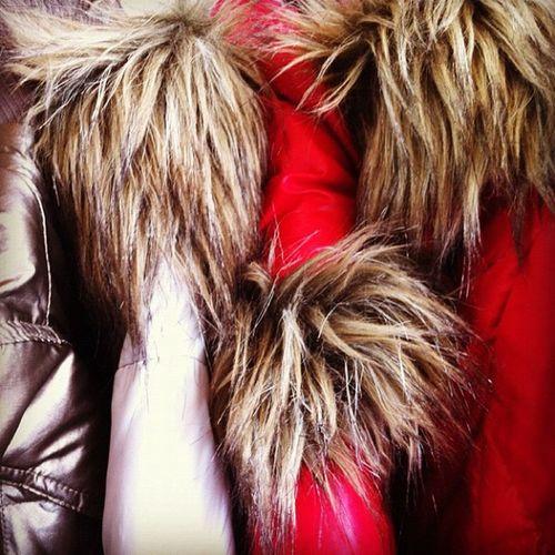 Winter coat. Furry.