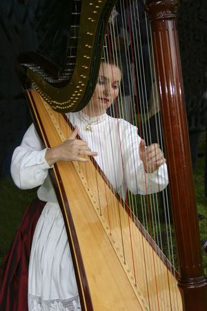 A harp player concentrating on her music Adult Arts Culture And Entertainment Classical Music Day Entertainment Harp Harpist Indoors  Music Musical Instrument Musical Instrument String Musical Performance Musician One Person People Performance Performing Arts Event Playing Real People Skill  String Instrument Young Adult