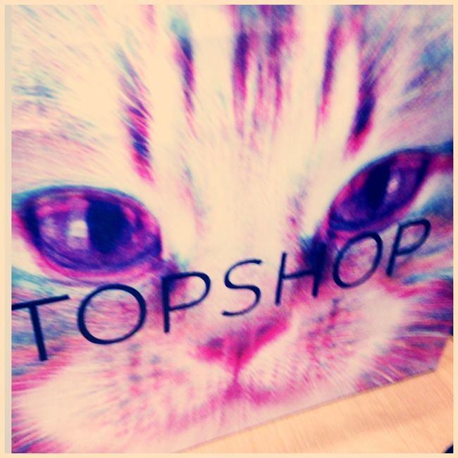 TOP SHOP Cats Shpping
