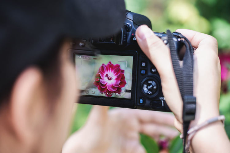 Close-up of person photographing pink flower