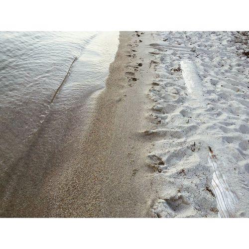 Beach Nature Scenics Summer Shore First Eyeem Photo