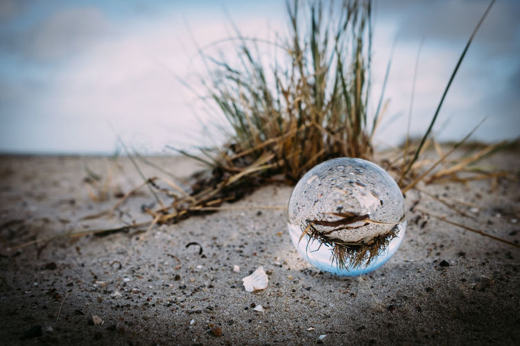 Crystal Ball Reflection Beach Close-up Day Focus On Foreground Nature No People Outdoors Sand Sea Sky Water