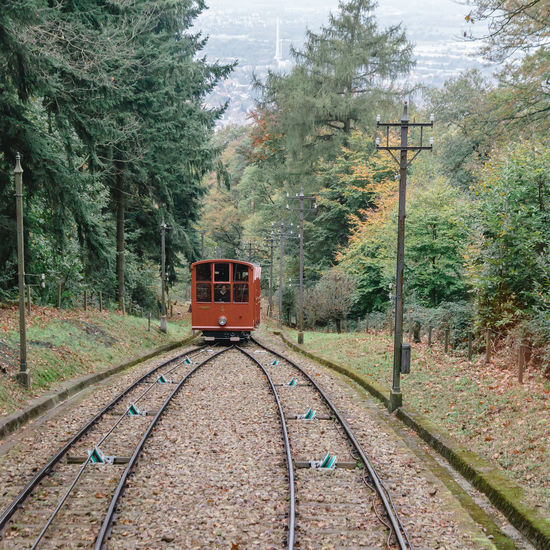 Baden-Württemberg  Day EyeEmNewHere Gear Wheel Germany Growth Heidelberg Journey Mountain Nature No People Outdoors Public Transportation Rack Railway Rail Transportation Railroad Railroad Track Sky Steam Train Train Train - Vehicle Transportation Tree Windmade