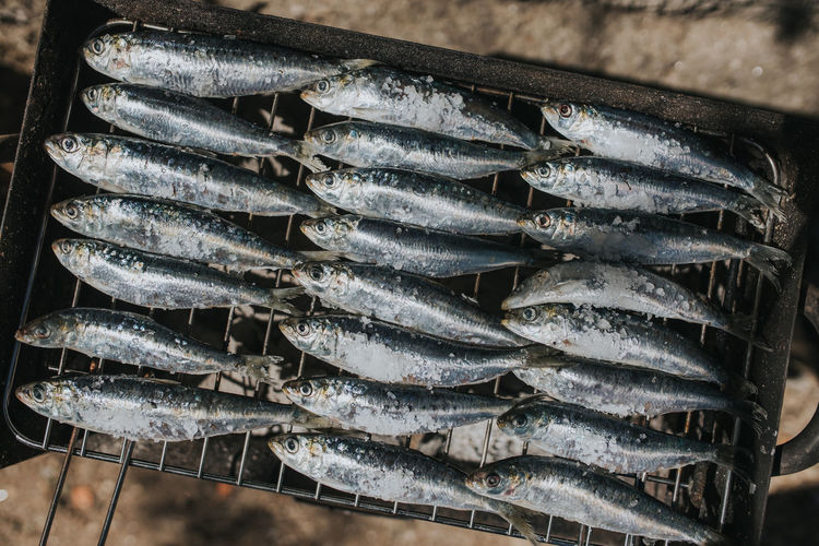 High angle view of fish on the grill