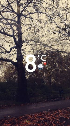 Winter is LOVE ❤️🍂 Check This Out Hanging Out Hello World Taking Photos Creativity IPhone IPhoneography Winter EyeEm Gallery Popular Photos London Travel Photography Travel