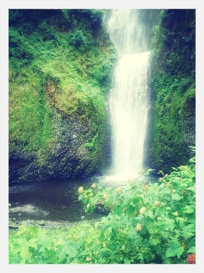 Eye4photography  WOW Beautiful Waterfall Check This Out