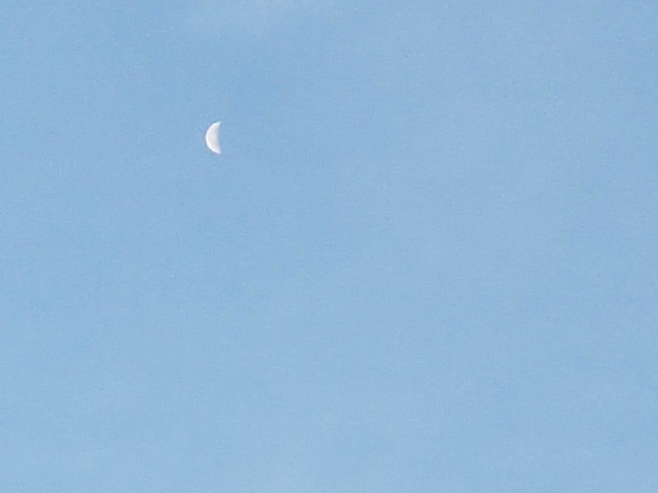 moon, nature, clear sky, copy space, half moon, low angle view, astronomy, crescent, beauty in nature, blue, scenics, tranquility, sky, outdoors, day, no people, space exploration, space