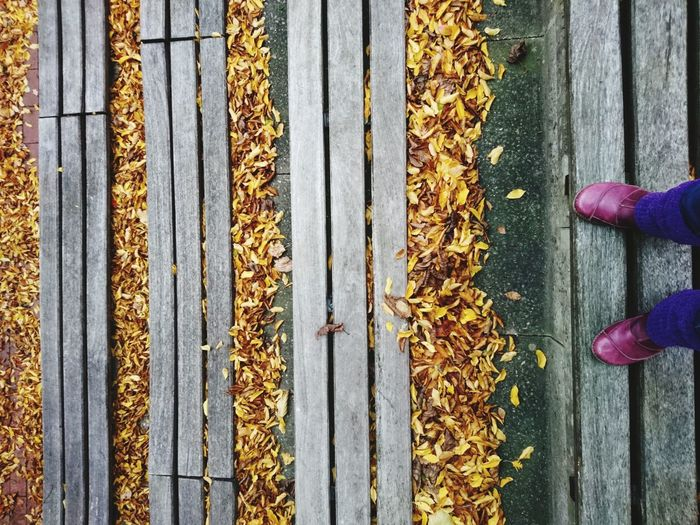 Low section of person standing on wood during autumn