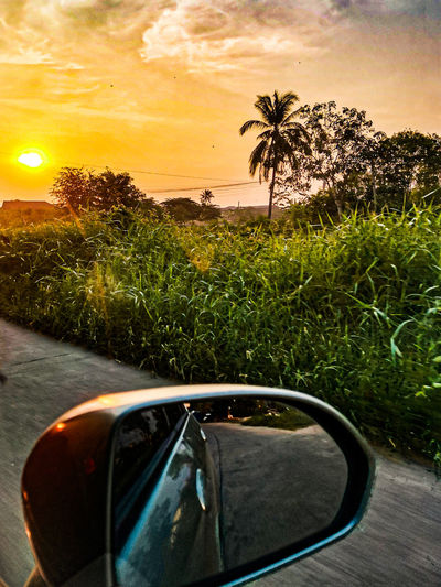 View of side-view mirror at sunset