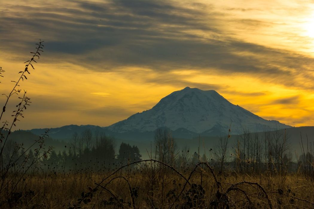 Mt. Rainier Beauty In Nature Cloud - Sky Day Landscape Mountain Nature No People Outdoors Scenics Sky Sunset Tranquil Scene Tranquility