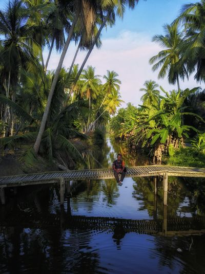 Man sitting on footbridge over river against palm trees
