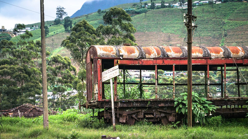 Old train station near Nuwara Eliya, Sri Lanka. Nature has taken it's place in the old train wrecks. Sign Sri Lanka Train Tracks Trainwreck Wreck Day Grassland Highlands Locomotive Mode Of Transport Mountain Nature No People Nuwaraeliya Outdoors Rail Transportation Railroad Track Rusty Signboard Steam Train Train - Vehicle Train Station Transportation Travel Destinations Vintage Lost In The Landscape