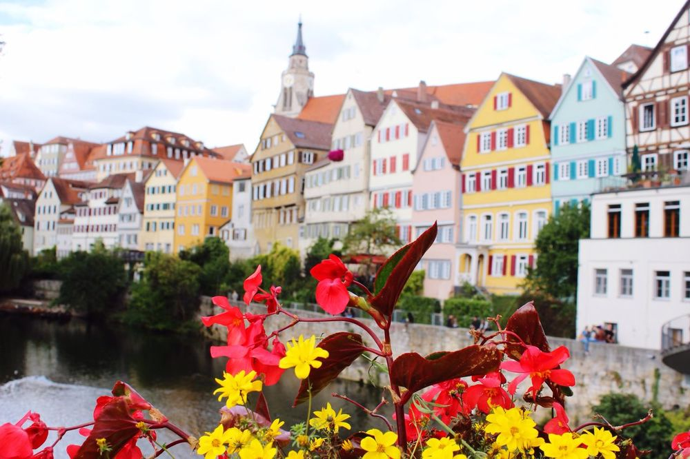 Germany Europe Riverwalk Architecture Building Exterior Flower Focus On Foreground House City Autumn Town Blossom EyeEm Best Shots Tübingen German Adventure Awaits Discover Your City Discover The World Travel Traveling