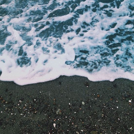 | washed up | Beach Pacific Northwest
