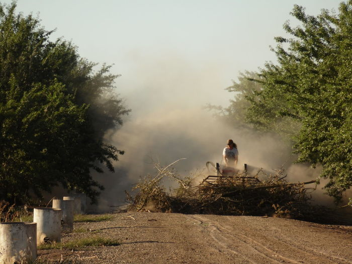Man driving agricultural machinery at farm