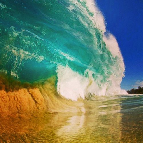 Sea ClarkLittle Playa DreamMoments Love Sable Hawai Sun Waves Snoboard Surfers
