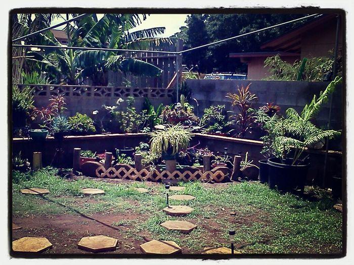 Landscape Yard Work LanaZ Garden  Re-arrange