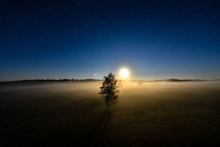 Stars over misty meadow with raising moon in bialowieza