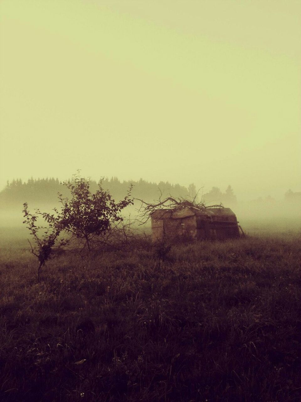 Abandoned House On Grassy Field In Foggy Weather