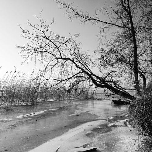 Zima na Wiśle No People Sky Nature Eisla