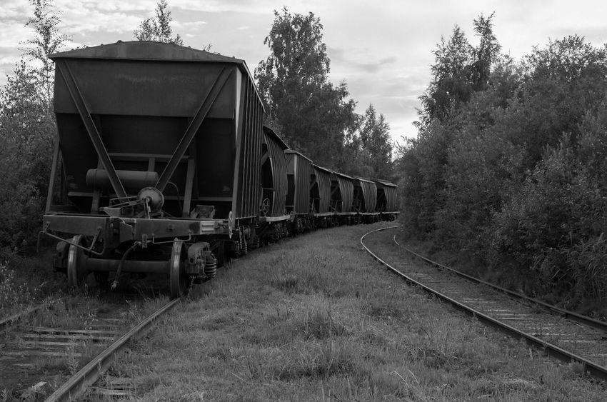 fotobyForbik© Treveling Black&white Trein